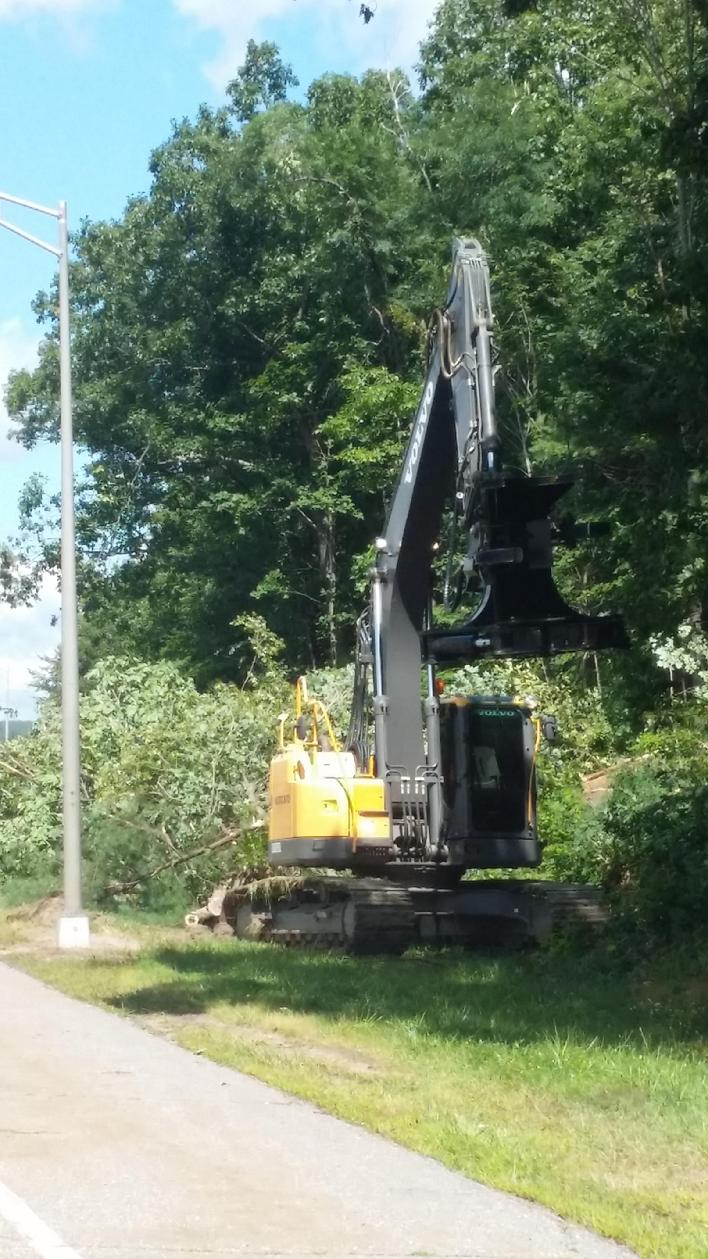 Feller Buncher clearing land Right of Way Landclearing